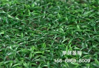 大连操场人造草坪