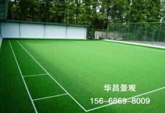 大连球场人造草坪