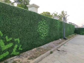 大连室外仿真绿篱