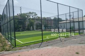 大连足球场人造草坪